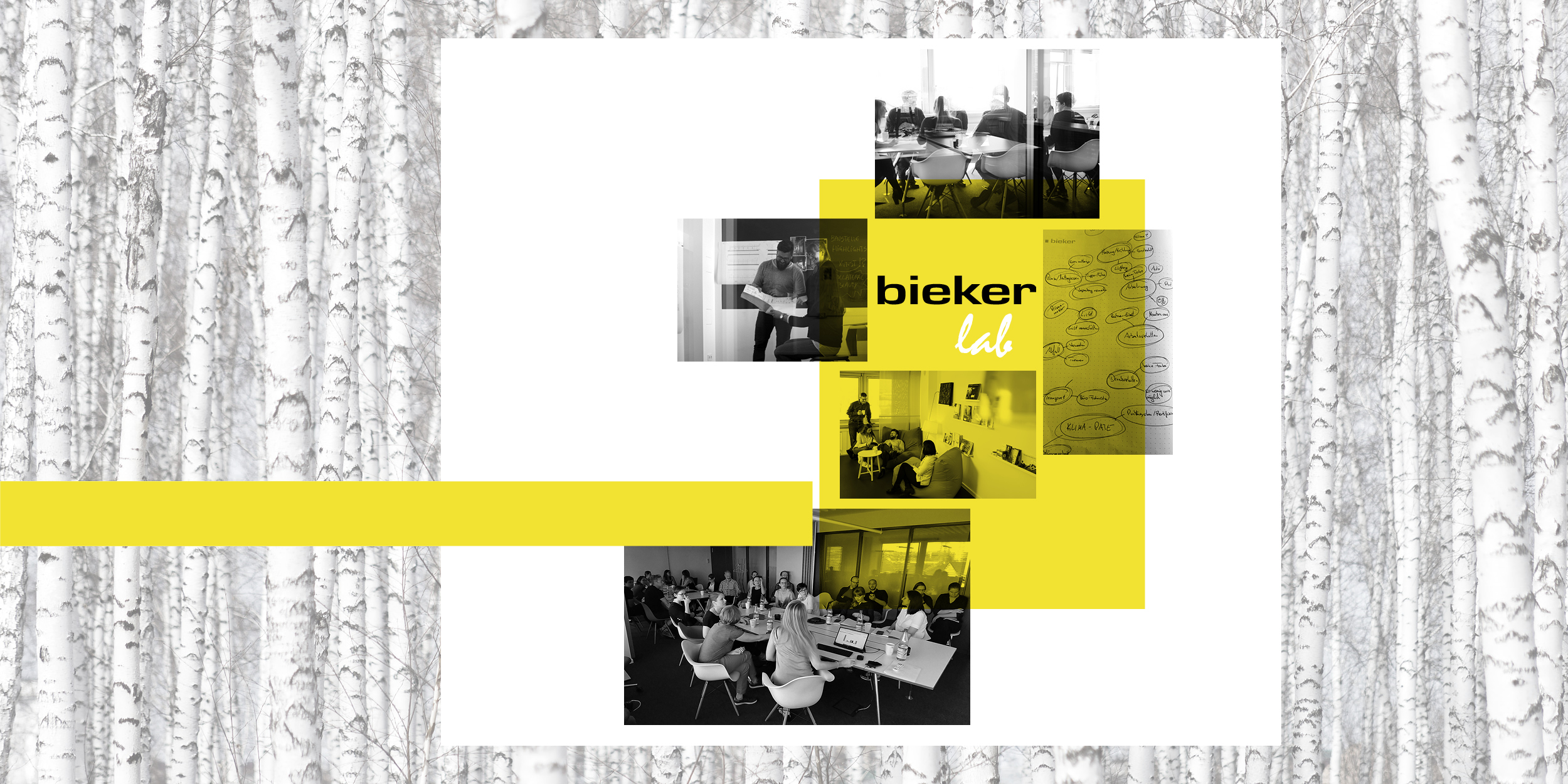 .bieker Lab Collage